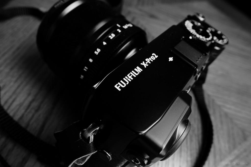 Fujifilm X-Pro 2 – A Few of My Favorite Things